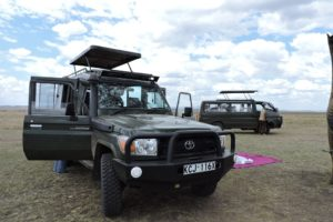 Picnic Break On Safari