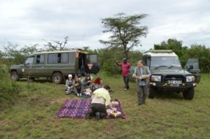 Picnic On Safari