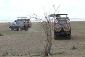Land Cruiser On Plains