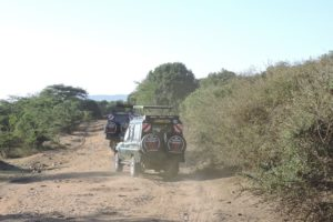 Land Cruiser In African Bush