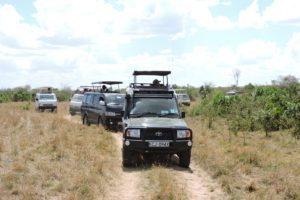Safari Convoy