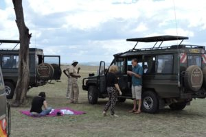 Lunch On Safari