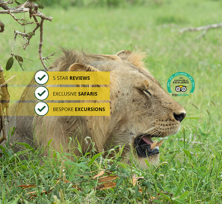 3 Days, 2 National Parks &#8211; Beach to Beach Safari<br /><small>Mombasa &#8211; Tsavo West &#8211; Amboseli &#8211; Mombasa</small>