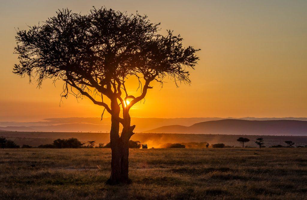 safari jeep and sunset over the masai mara