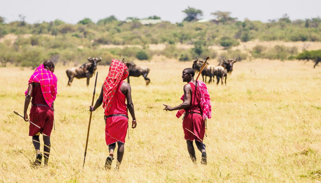 Maasai guides in bright red shukas on a walking safari